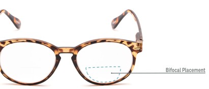 Detail of The Actor Bifocal in Dark Brown Tortoise
