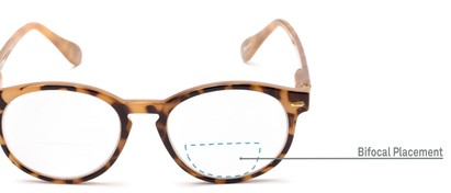 Detail of The Actor Bifocal in Light Brown Tortoise