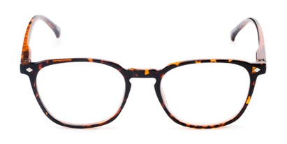 Front of The Alistair in Glossy Tortoise