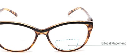 Detail of The Ambrosia Bifocal in Brown Tortoise
