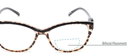 Detail of The Ambrosia Bifocal in Leopard and Black