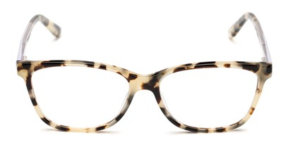 Front of The Astor Signature Reader in Tortoise/Clear