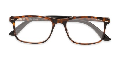 Folded of The Arvil in Tortoise/Black