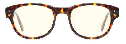 Front of The College Blue Light Blocking Reader in Brown Tortoise