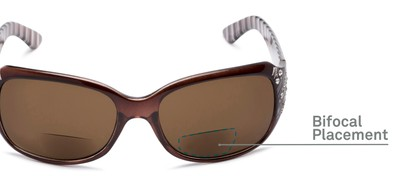 Detail of The Bernice Bifocal Reading Sunglasses in Brown with Amber