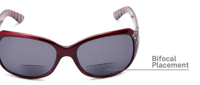 Detail of The Bernice Bifocal Reading Sunglasses in Red with Smoke