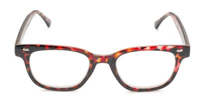 Front of The Blanche in Red Tortoise