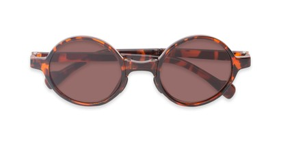 Folded of The Brayton Folding Reading Sunglasses in Tortoise with Amber
