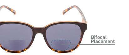 Detail of The Cecily Bifocal Reading Sunglasses in Brown/Tortoise with Smoke
