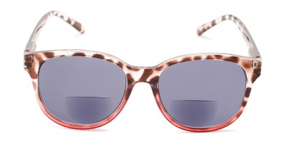 Front of The Cecily Bifocal Reading Sunglasses in Tortoise/Pink with Smoke