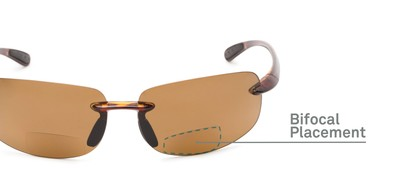 Detail of The Cedric Polarized Bifocal Reading Sunglasses in Tortoise with Amber