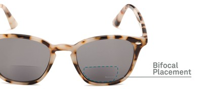Detail of The Chambray Bifocal Reading Sunglasses in Tan Tortoise with Smoke