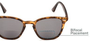 Detail of The Chambray Bifocal Reading Sunglasses in Matte Brown Tortoise with Smoke