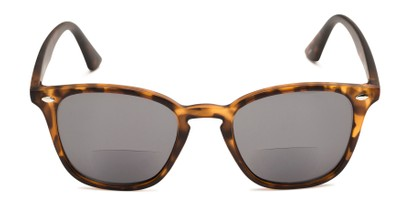 Front of The Chambray Bifocal Reading Sunglasses in Matte Brown Tortoise with Smoke