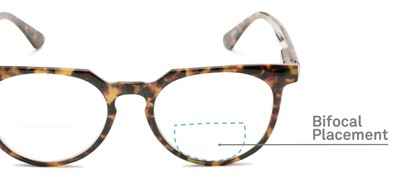 Detail of The Chapter Bifocal in Brown Tortoise