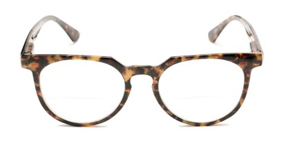 Front of The Chapter Bifocal in Brown Tortoise