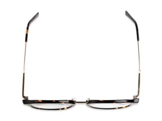Overhead of The Chateau Signature Reader in Brown Tortoise/Gold