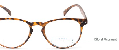 Detail of The Chatham Flexible Bifocal in Light Tortoise