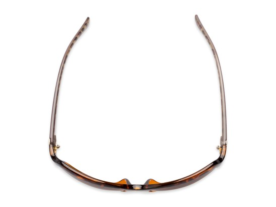 Overhead of The Cleo Bifocal Reading Sunglasses in Tortoise/Brown Leopard with Amber