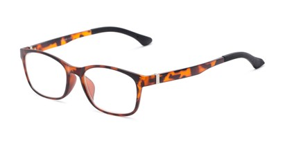 Angle of The Colt in Tortoise, Women's and Men's Retro Square Reading Glasses