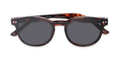 round polarized magnetic bifocal sun reader