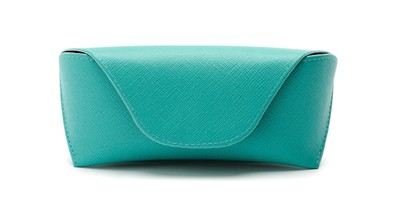 Front of Pastel Reading Glasses Case in Green