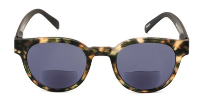 Front of The Dane Bifocal Reading Sunglasses in Matte Brown Tortoise/Black with Smoke