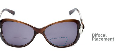 Detail of The Delia Bifocal Reading Sunglasses in Brown with Smoke