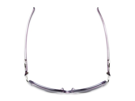 Overhead of The Delia Bifocal Reading Sunglasses in Purple with Smoke