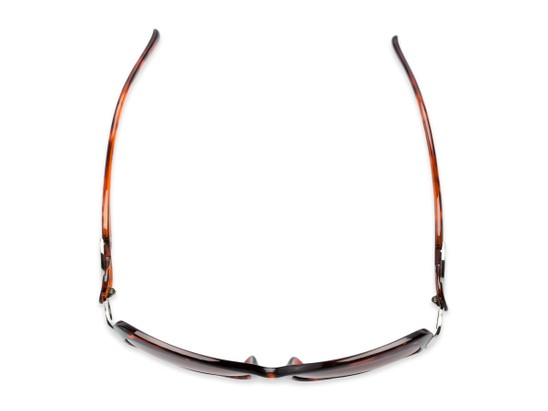 Overhead of The Delia Bifocal Reading Sunglasses in Tortoise with Amber
