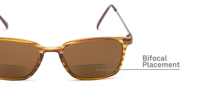 Detail of The Dodger Bifocal Reading Sunglasses in Glossy Brown Stripe with Amber