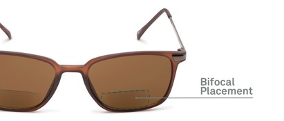 Detail of The Dodger Bifocal Reading Sunglasses in Matte Brown with Amber