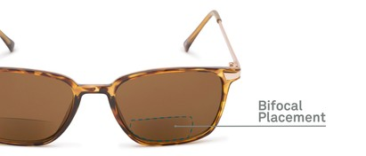 Detail of The Dodger Bifocal Reading Sunglasses in Glossy Tortoise with Amber