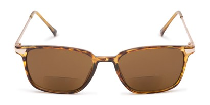 Front of The Dodger Bifocal Reading Sunglasses in Glossy Tortoise with Amber