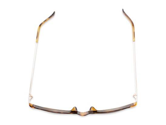 Overhead of The Dodger Bifocal Reading Sunglasses in Glossy Tortoise with Amber