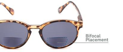 Detail of The Drama Bifocal Reading Sunglasses in Dark Tortoise with Smoke