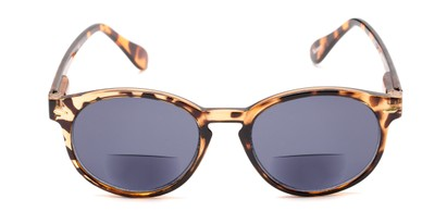 Front of The Drama Bifocal Reading Sunglasses in Dark Tortoise with Smoke