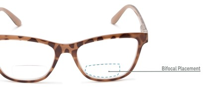 Detail of The Eiffel Bifocal in Glossy Tortoise