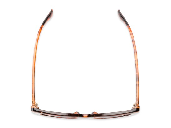 Overhead of The Elora Reading Sunglasses in Orange Tortoise with Smoke