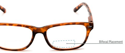 Detail of The Emery Bifocal  in Tortoise