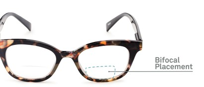 Detail of The Etta Bifocal in Tortoise