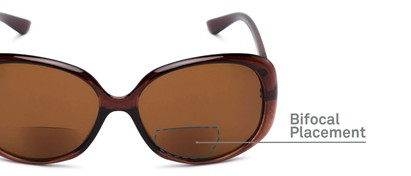 Detail of The Evelyn Bifocal Reading Sunglasses in Brown with Amber