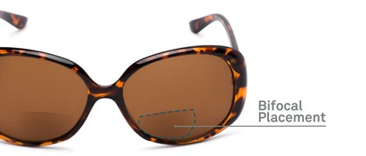 Detail of The Evelyn Bifocal Reading Sunglasses in Tortoise with Amber