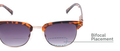 Detail of The Everglade Bifocal Reading Sunglasses in Tortoise with Smoke