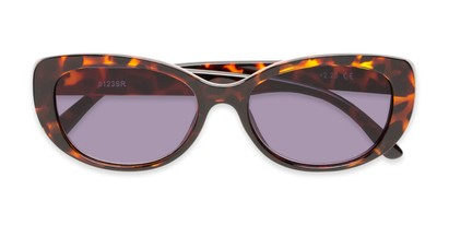 Folded of The Firefly Reading Sunglasses in Brown Tortoise with Smoke
