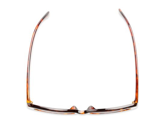 Overhead of The Firefly Reading Sunglasses in Brown Tortoise with Smoke