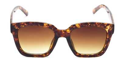 Front of The Foley Reading Sunglasses in Tortoise/Gold with Amber