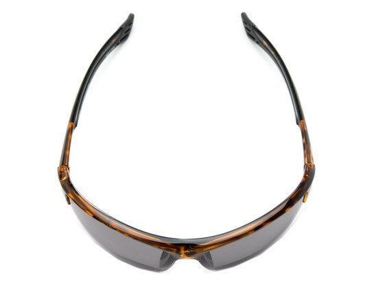 Overhead of The Foster Bifocal Reading Sunglasses in Tortoise with Smoke