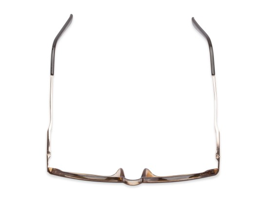Overhead of The Geller Reading Sunglasses in Brown/Gold with Smoke