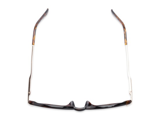 Overhead of The Geller Reading Sunglasses in Tortoise/Gold with Smoke